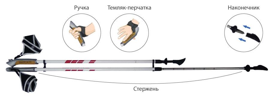 Техника скандинавской ходьбы для начинающих с палками